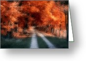 Leaves Photo Greeting Cards - Autumn Lane Greeting Card by Tom Mc Nemar