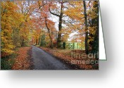 Country Lanes Photo Greeting Cards - Autumn Leaves Greeting Card by Harold Nuttall
