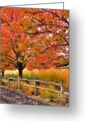 Red Leaves Greeting Cards - Autumn Leaves Greeting Card by Mars Lasar