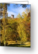 Red Autumn Trees Greeting Cards - Autumn Lookout Greeting Card by Lutz Baar