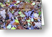 Heaven Digital Art Greeting Cards - Autumn Mosaic Greeting Card by Mindy Newman