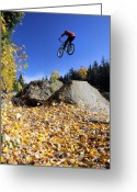 Biking Greeting Cards - Autumn mountain bike in Whistler Greeting Card by Pierre Leclerc