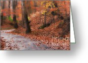 Midori Greeting Cards - Autumn on a Quiet Country Lane Greeting Card by Happy Walls