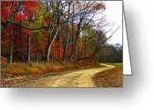 Country Dirt Roads Photo Greeting Cards - Autumn on Bottomland Road Greeting Card by Julie Dant