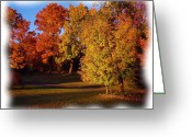 Reds Of Autumn Greeting Cards - Autumn on Swansons Path Greeting Card by Liz Evensen