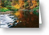 Merced County Greeting Cards - Autumn on the Merced River Yosemite NP Greeting Card by Edward Mendes