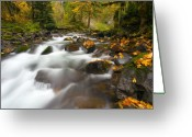 Cascade Greeting Cards - Autumn Passages Greeting Card by Mike  Dawson