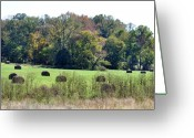 Bales Greeting Cards - Autumn Pastures Greeting Card by Jan Amiss Photography