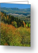 Fall Photographs Greeting Cards - Autumn  Greeting Card by Pavel  Filatov