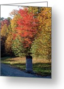 Homesickness Greeting Cards - Autumn Post Greeting Card by Douglas Barnett