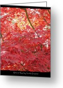 Red Leaves Greeting Cards - Autumn Red Poster Greeting Card by Carol Groenen
