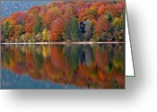 Lake Bohinj Greeting Cards - Autumn Reflections on Lake Bohinj in Slovenia Greeting Card by Greg Matchick