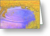 Cindy Longhini Greeting Cards - Autumn Ripples Greeting Card by Cindy Lee Longhini