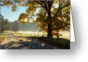 Country Dirt Roads Photo Greeting Cards - Autumn Road Greeting Card by Bill  Wakeley