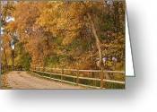Autumn Photographs Greeting Cards - Autumn  Road to the Ranch Greeting Card by James Bo Insogna
