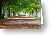 Versailles Greeting Cards - Autumn Scene Greeting Card by Paul Biris