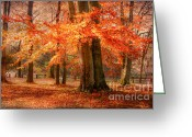 Munich Greeting Cards - autumn skirt I Greeting Card by Hannes Cmarits