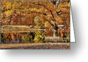 White River Scene Greeting Cards - Autumn Solitude Greeting Card by Darren Fisher