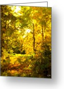 Johnny Trippick Greeting Cards - Autumn Splash Greeting Card by Johnny Trippick