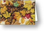 Autumn Season Greeting Cards - Autumn Splendor Greeting Card by JQ Licensing