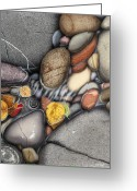 Leaf Painting Greeting Cards - Autumn Stones Greeting Card by JQ Licensing