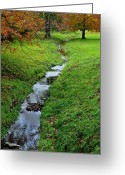 Family Love Greeting Cards - Autumn Stream Greeting Card by Robert Harmon