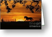 Western Sky Greeting Cards - Autumn Sun Greeting Card by Stephanie Laird
