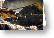 Leaves Photo Greeting Cards - Autumn Sunrise Great Falls Maine Greeting Card by Bob Orsillo