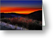 Evening Scenes Digital Art Greeting Cards - Autumn Sunrise Greeting Card by William Carroll