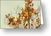Autumnal Digital Art Greeting Cards - autumn symphonies I Greeting Card by Iris Lehnhardt