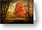 Fall Photographs Greeting Cards - Autumn Trail Greeting Card by Kathy Jennings