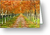 Dirt Road Greeting Cards - Autumn Tree Greeting Card by Julien Fourniol/Baloulumix