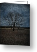 Rural Decay Prints Greeting Cards - Autumn Tree Greeting Card by Larysa Luciw