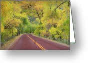 Double Yellow Line Greeting Cards - Autumn Trees On Road Greeting Card by Royce Bair