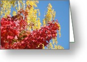 Red Leaves Greeting Cards - AUTUMN TREES Red Yellow Fall Tree Blue Sky Landsape Greeting Card by Baslee Troutman Fine Art Collections