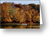 Indiana Autumn Photo Greeting Cards - Autumn Trees Greeting Card by Sandy Keeton