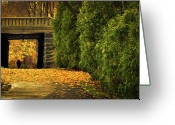 Walking Greeting Cards - Autumn Twilight Greeting Card by Bob Orsillo