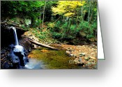 Appalachian Mountains Greeting Cards - Autumn Upper Falls Holly River Greeting Card by Thomas R Fletcher