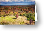 Maple Photographs Greeting Cards - Autumn View from the Pinnacle Greeting Card by Phill  Doherty