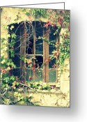 Old Abandoned House Greeting Cards - Autumn vines across a window Greeting Card by Georgia Fowler