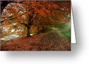 Change Pyrography Greeting Cards - Autumn Walk Greeting Card by Robert Evans