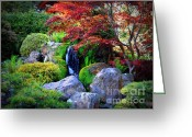 Japanese Maple Greeting Cards - Autumn Waterfall Greeting Card by Carol Groenen