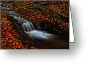 Drop Pyrography Greeting Cards - Autumn waterfall Greeting Card by Irinel Cirlanaru