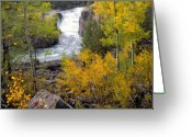 Lower Yellowstone Falls Greeting Cards - Autumn Waterfall Greeting Card by Leland Howard