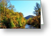 Trout Stream Greeting Cards - Autumn Williams River Greeting Card by Thomas R Fletcher