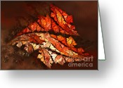 Storm Digital Art Greeting Cards - Autumn Wind Greeting Card by Jutta Maria Pusl