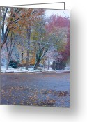 Old Street Greeting Cards - Autumn Winter Street Light Color Greeting Card by James Bo Insogna