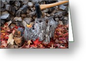 Tom Biegalski Greeting Cards - Autumn Wood Chopping Greeting Card by Tom Biegalski