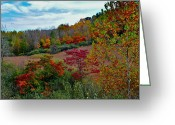 Ohio Country Greeting Cards - Autumnal Vista Greeting Card by Robert Harmon