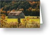 Warm Greeting Cards - Autumns colors Greeting Card by Sandra Cunningham